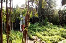 Delala com Houses for sale in Ethiopia